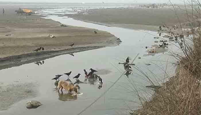 गंगा में बहती लाशों से संकट में प्रशासन