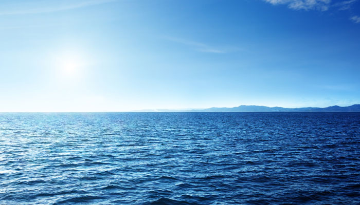 700 समुद्री प्रजातियों को प्लास्टिक के कचरे से खतरा: अध्ययन