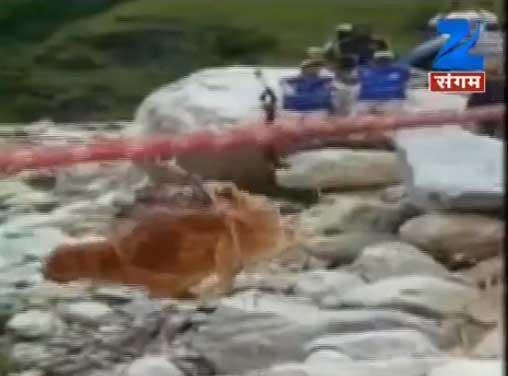 आईटीबीपी के जवानों ने गंगा नदी में फंसे कुत्ते को सुरक्षित बचाया