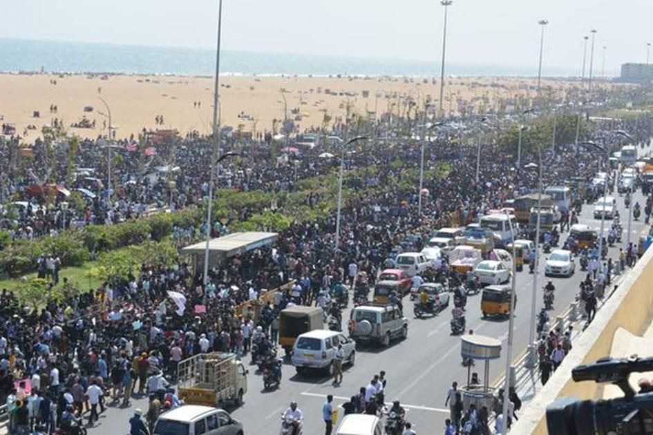 Jallikattu Protest in Tamil Nadu