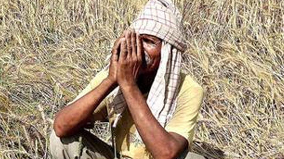 छत्तीसगढ़: आर्थिक तंगी के चलते ढाई साल में 1,344 किसानों ने की आत्महत्या