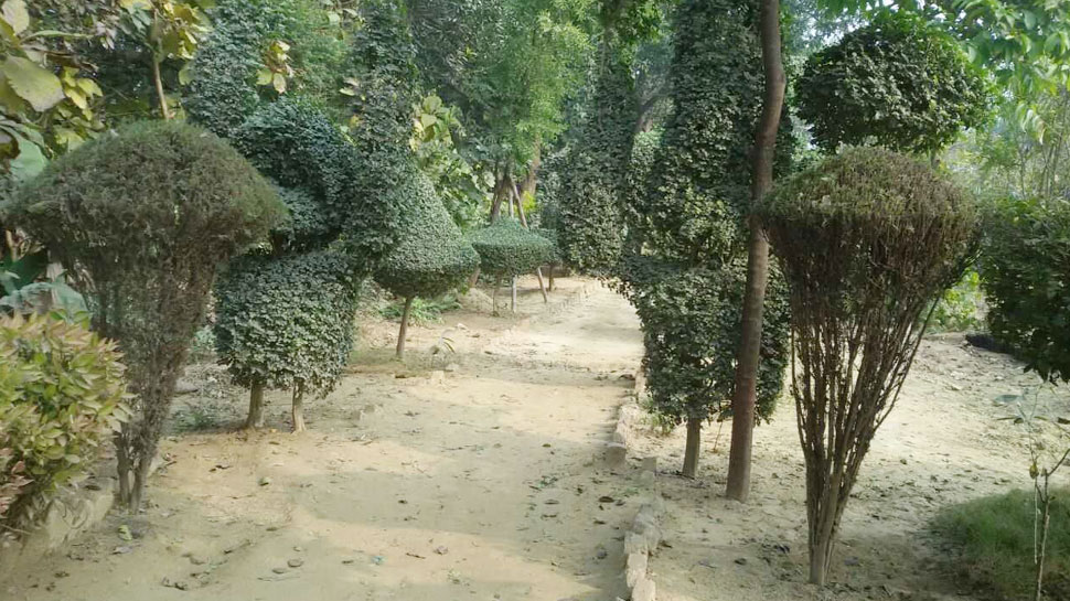 Interesting pics, Shivling, Ganesh, शिवलिंग, बगीचा