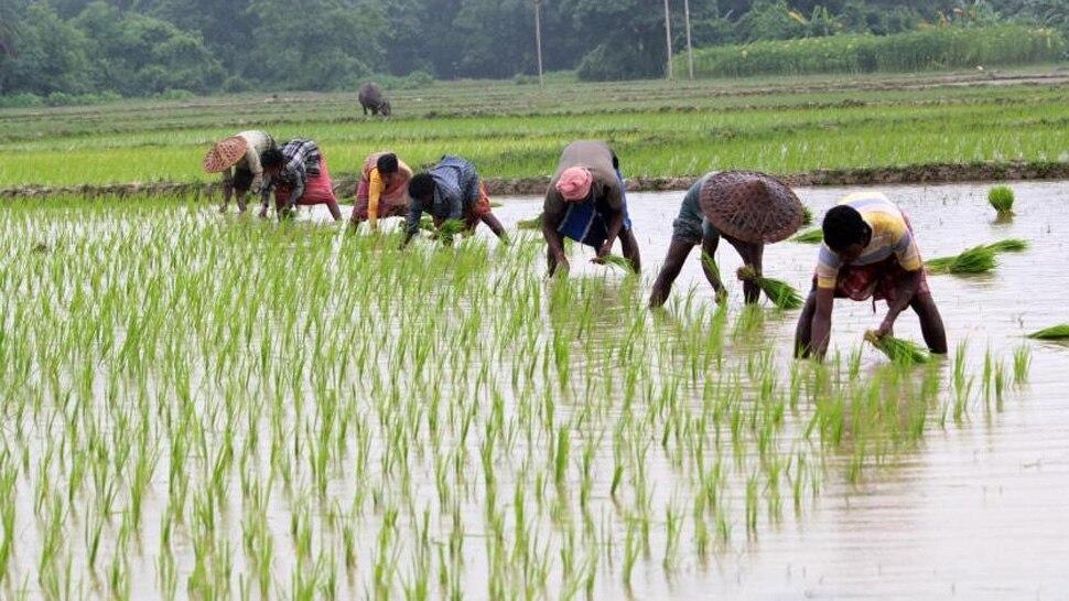 Budget Yatra: 'किसान' और 'खेती' शब्द बजट भाषण में सबसे अधिक बार हुए इस्तेमाल