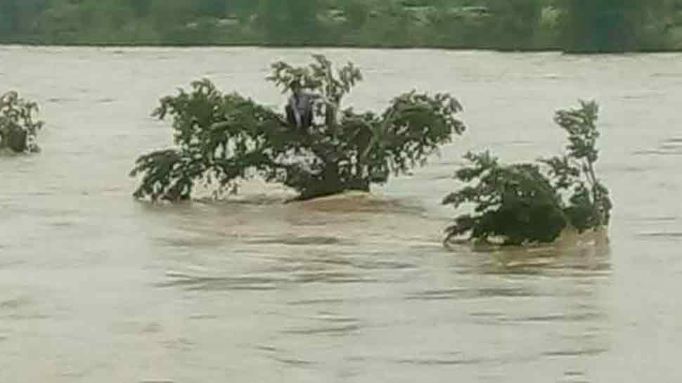 madhya pradesh vidisha Rescue Operation Of Young Man Flowing In river trapped on tree