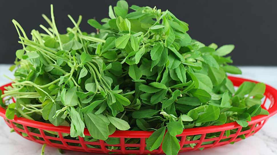 Fenugreek leaves stops virus