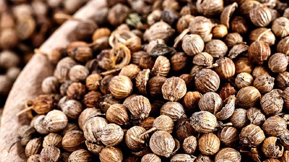 Coriander seeds on Dhanteras