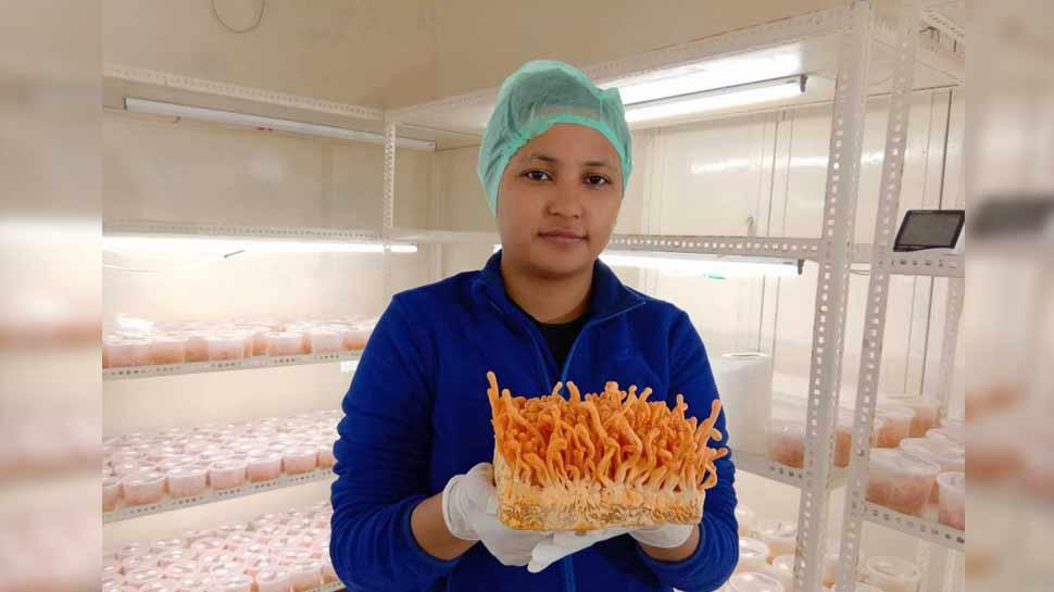 उत्तराखंड: लाखों की नौकरी छोड़कर शुरू किया अपना काम और बन गई 'मशरूम गर्ल'