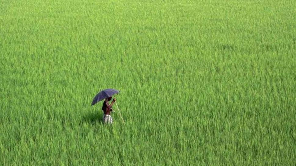 मध्य प्रदेश: किसान पर था  24000 रुपये का कर्ज, माफ हुए 13 रुपये!