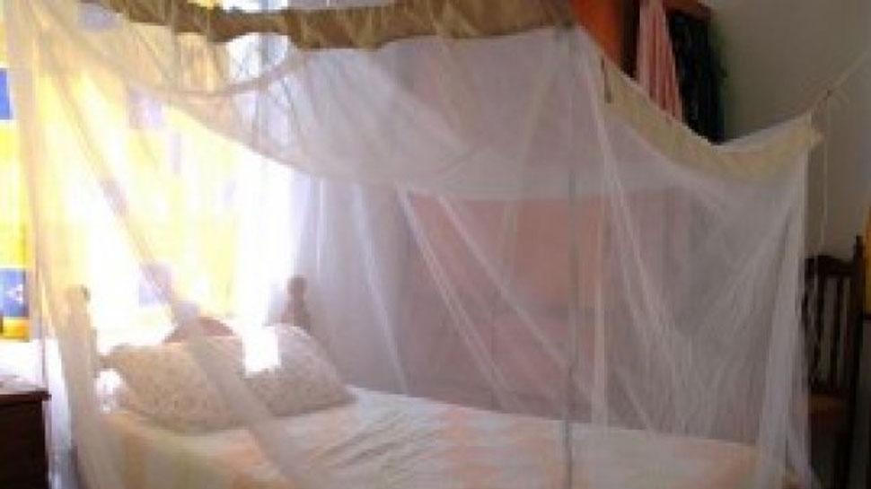 फ्री में बांटी जाएंगी 1.62 करोड़ मच्छरदानियां, इस राज्य के लिए जरूरी है ये खबर