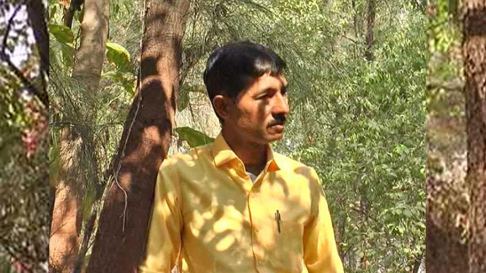 गुजरात: 9 साल पहले रोपे थे सफेद चंदन के एक हजार पौधे, अब होगी 30 करोड़ की कमाई