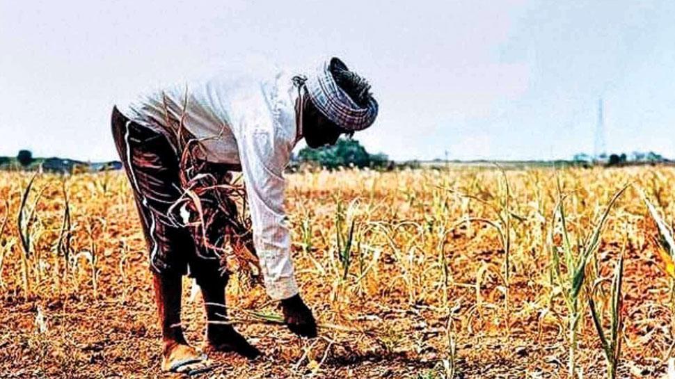 किसानों को जल्द मिलेगा बजट में घोषित मदद राशि का लाभ, केंद्र सरकार ने उठाया यह कदम