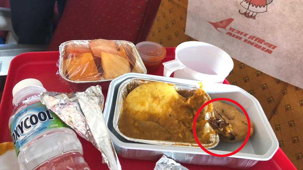 एयर इंडिया की फ्लाइट में बड़ी लापरवाही, यात्री के ब्रेकफास्ट में निकला कॉकरोच