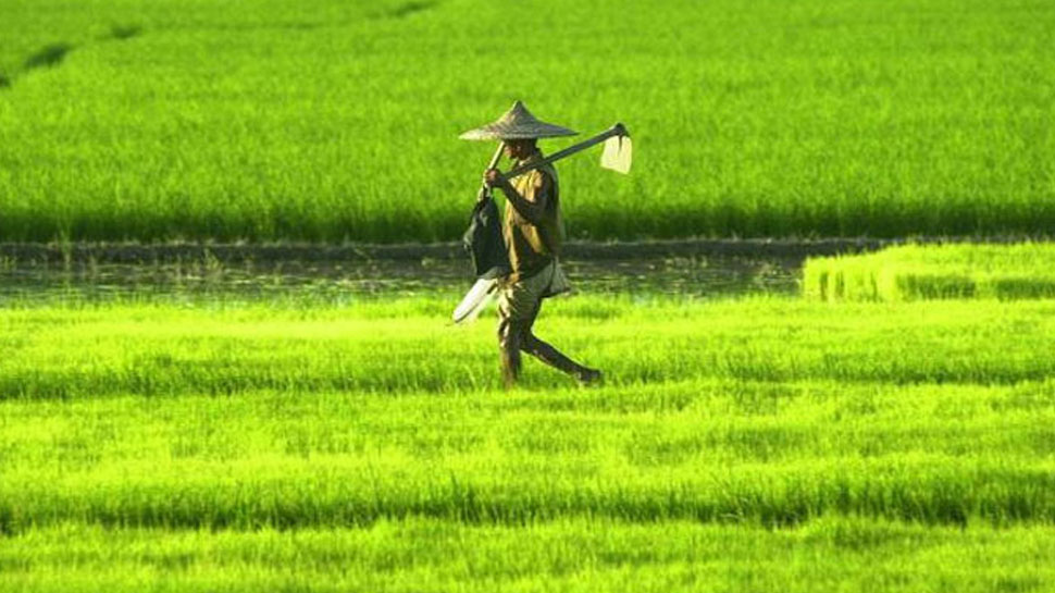 इंतजार करने की कोई जरूरत नहीं, फरवरी महीने में ही किसानों को मिलेगी पहली सैलरी