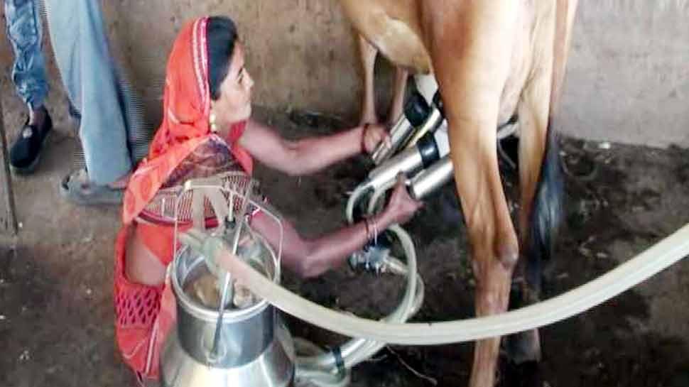 मिसाल: धर्मिष्टा ने कर्ज के पैसों से शुरू किया पशुपालन, आज हैं 'रोजगारदाता'