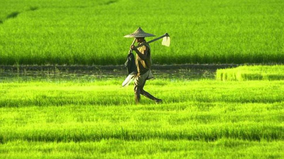 इंद्र देव के भरोसे है खेती, 60 फीसदी किसानों की आजीविका बारिश पर निर्भर