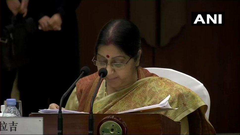 चीन में सुषमा स्वराज ने उठाया आतंकवाद का मुद्दा, कहा- 'जैश भारत में और हमले करना चाहता था'
