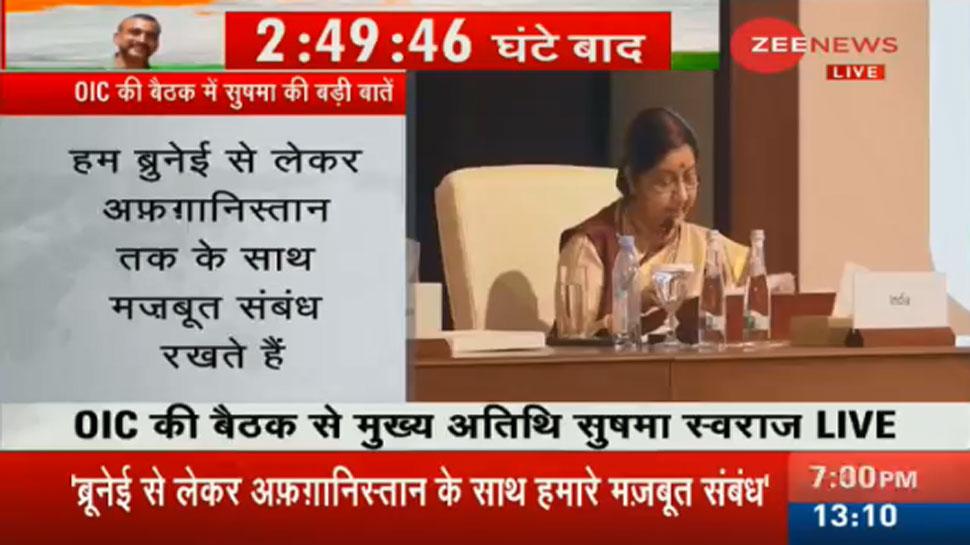 OIC की बैठक में बोलीं सुषमा स्वराज: आतंकवाद ने कई जिंदगियां तबाह की हैं   खास बातें