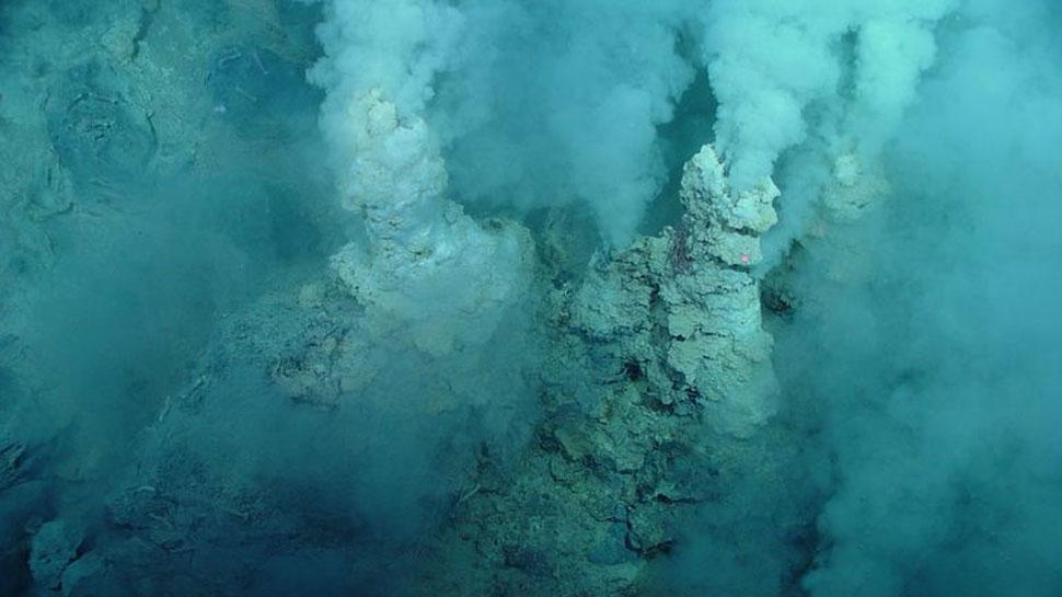 समंदर में मिला ऐसा जीवाणु जो पिता है तेल, वैज्ञानिकों ने कहा...