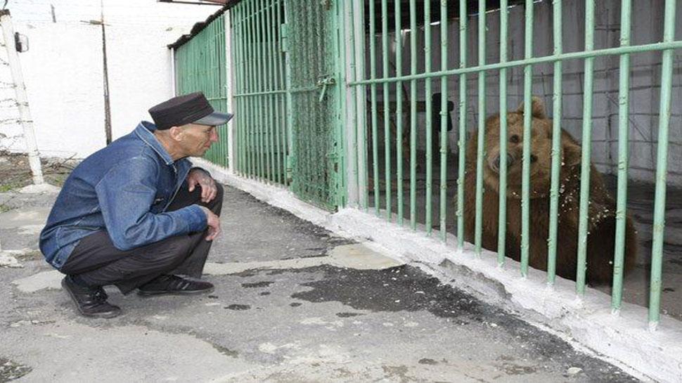 इस भालू को मिली है उम्रकैद की सजा, कारण सुन आप भी कहेंगे, 'बात तो बहुत मामूली थी'