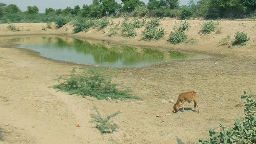 बीकानेर के जोहड़ सूखने के कगार पर, भयंकर गर्मी के बीच खड़ा हुआ पेयजल संकट