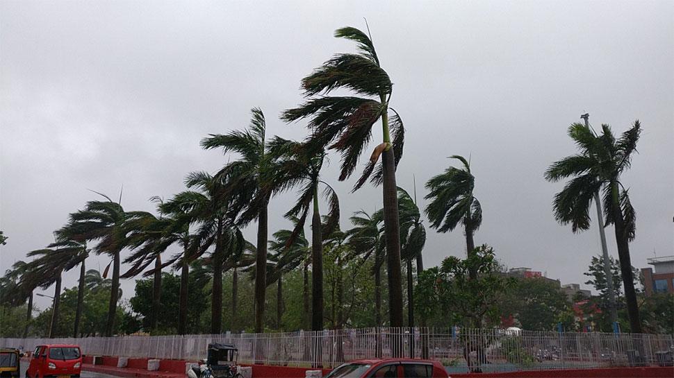 फोनी तूफान के बाद ओडिशा अभयारण्य से लापता हिरणों की ड्रोन से होगी तलाश