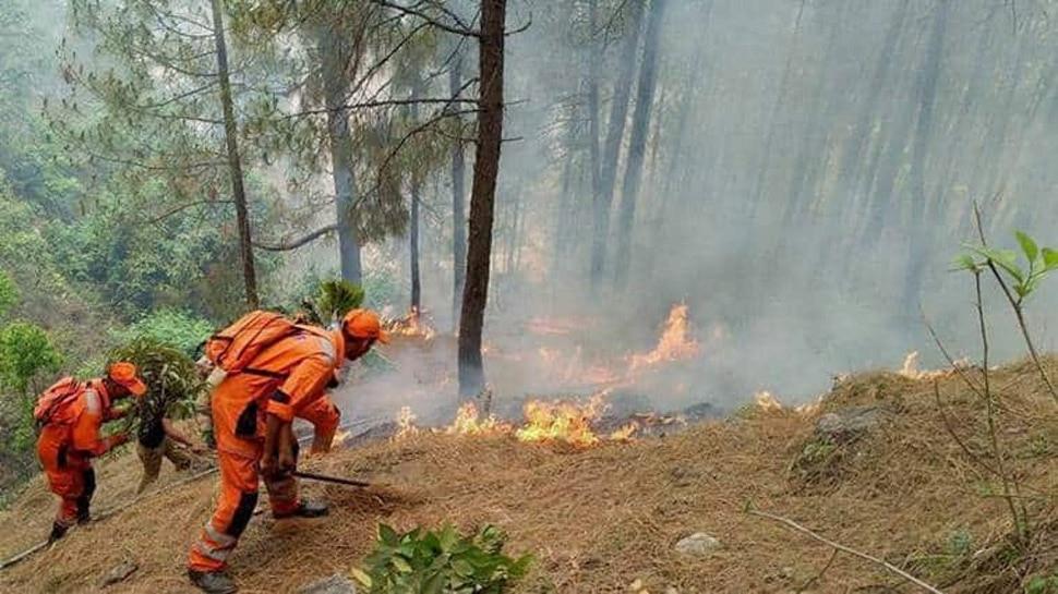 पिछले 1 महीने से जल रहे हैं उत्तराखंड के जंगल, सरकार के पास राहत का कोई प्लान नहीं