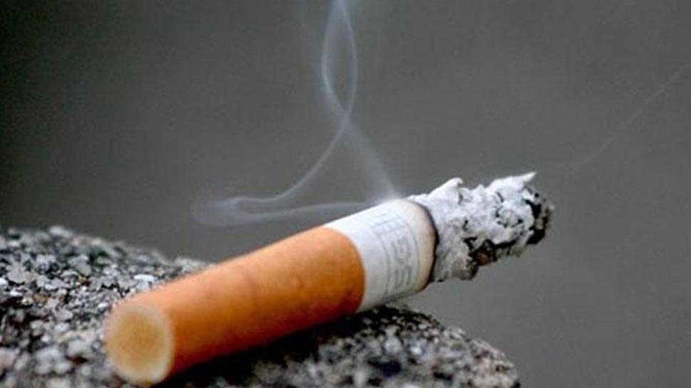 Tobacco cause damage to chromosomes