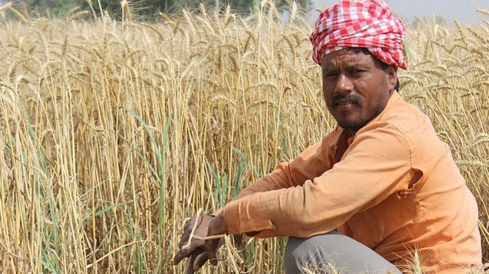 राजस्थान: लाखों किसानों को मिली राहत, ऋण के लिए कर सकेंगे ऑनलाइन आवेदन