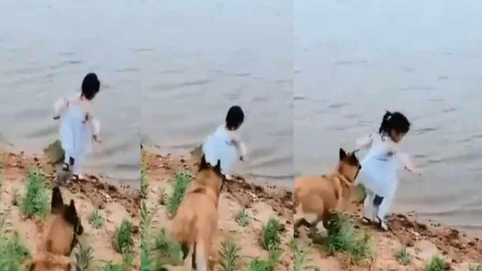 VIDEO: डॉग ने अपनी समझदारी से नदी की ओर जा रही बच्ची की बचाई जान, हो रही जमकर तारीफ