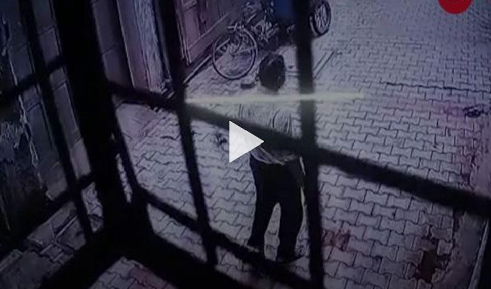 VIDEO: वृंदावन में नहीं थम रहा बंदरों का आतंक, दुकानदार पर किया जानलेवा हमला