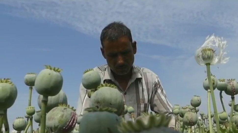 प्रतापगढ़: किसानों के प्रतिनिधिमंडल ने की नारकोटिक्स विभाग के अधिकारियों से मुलाकात, दिए सुझाव