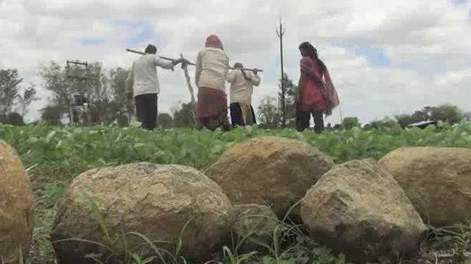 Baburao's daughters solve the fields with their father