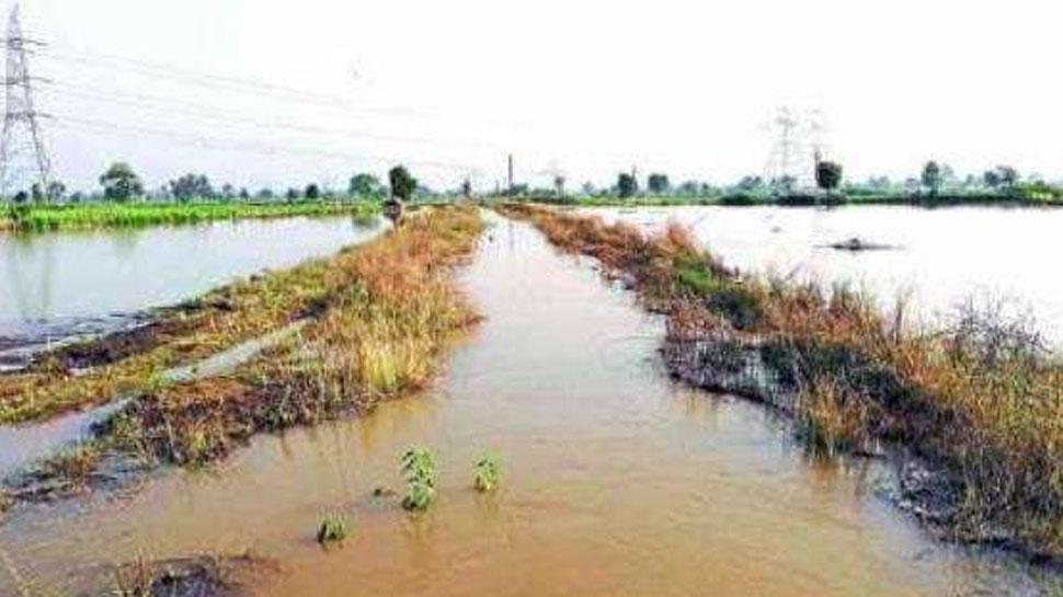 राजस्थान के कुछ इलाकों में जमकर हुई बारिश, सूखी नदियों में भरा पानी