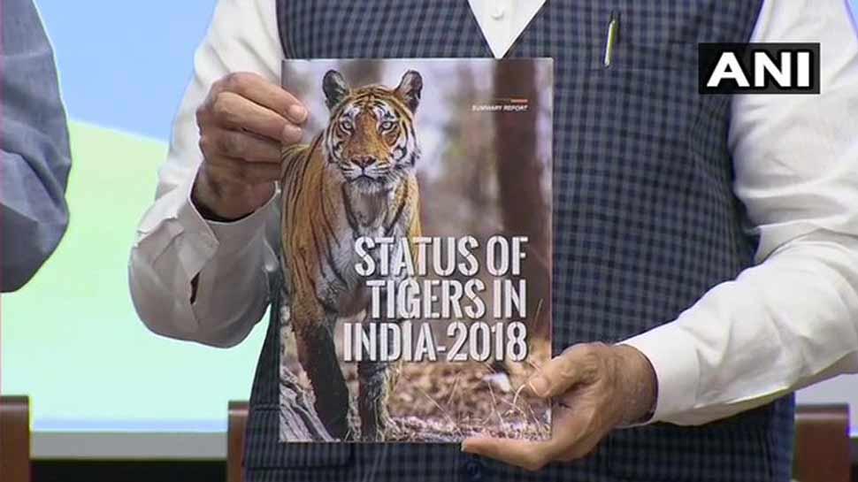 #TigerStateOfIndia: उत्तर प्रदेश और उत्तराखंड में बढ़ी बाघों की संख्या
