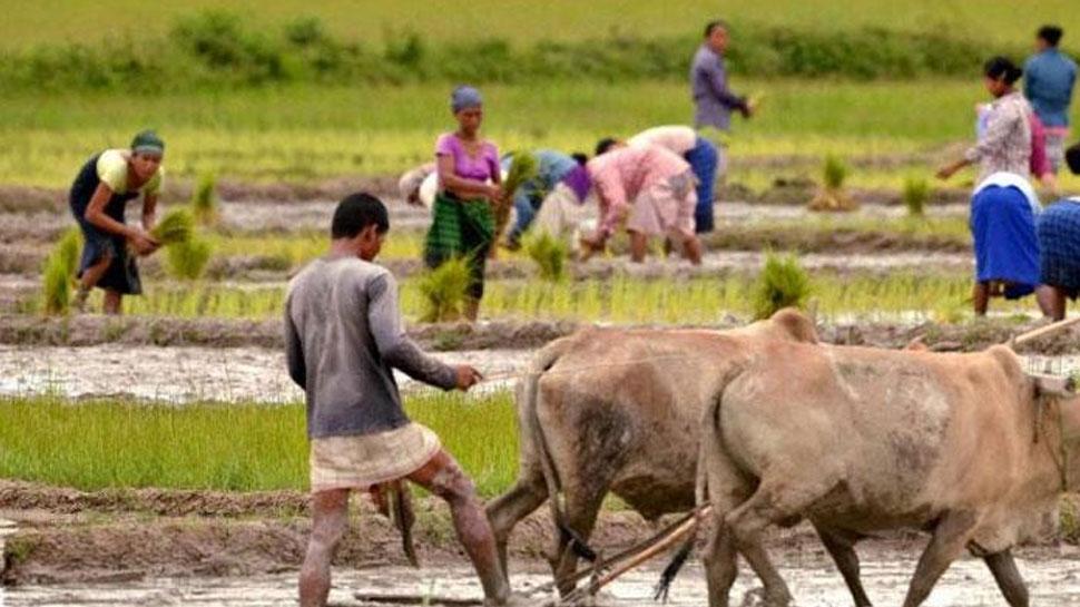 उप्र: धान के खेत में काम कर रही 5 महिलाओं की करंट लगने से मौत