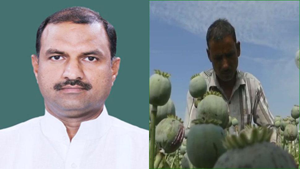 राजस्थान: अफीम उत्पादन के मुद्दे पर दिल्ली में हुई बैठक, किसानों को मिल सकती है खुशखबरी