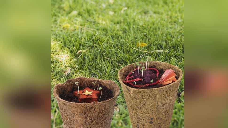 रक्षाबंधन पर बाजार में आई ईको फ्रेडली राखी, मिट्टी में डालने से उगेगा तुलसी का पौधा