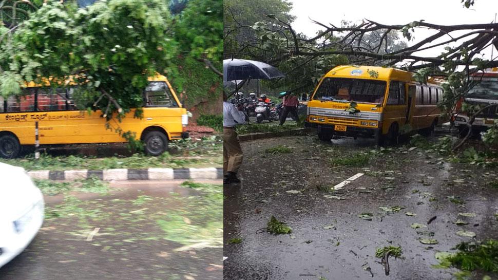 मंगलुरु : छात्रों से भरी स्कूल बस पर गिरा विशाल पेड़, बाल-बाल बचे 17 बच्चे