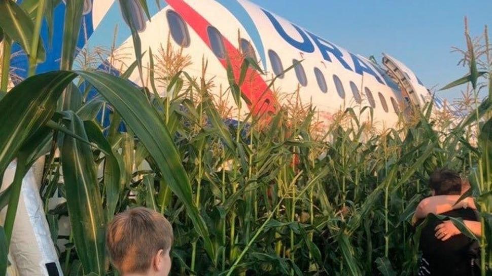टेक ऑफ करते ही पक्षियों के झुंड से टकरा गया यात्रियों से भरा विमान, पायलट ने खेत में की लैंडिंग...