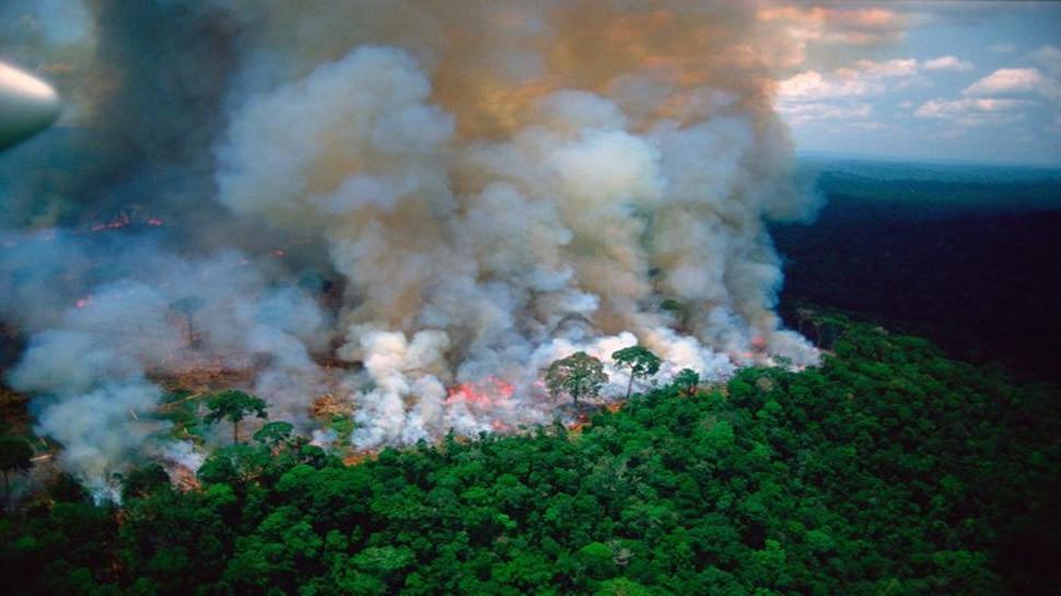 अमेजन के जंगलों में लगी आग बुझाने के लिए भेजी गई सेना, यूरोपीय नेताओं का दबाव आया काम