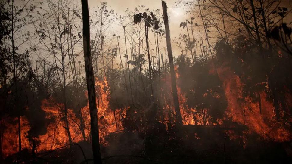 'धरती के फेफड़ों' में लगी आग, जी-7 देशों ने मदद के लिए बढ़ाया हाथ तो ब्राजील ने किया मना