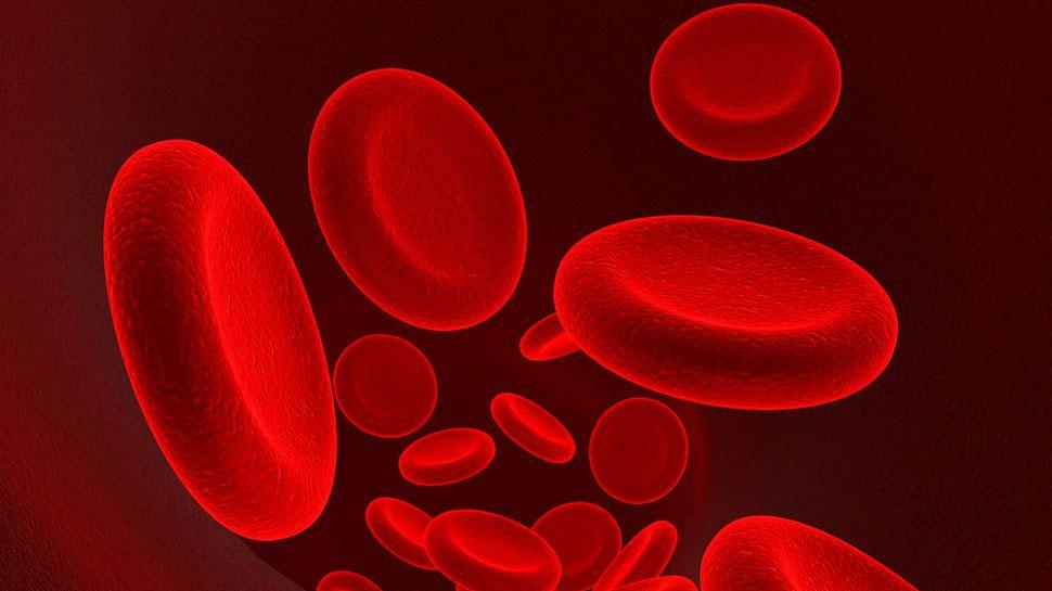 इस शहर में बढ़ रहे हैं एनीमिया के मरीज, खानपान में बदलाव कर ऐसे दूर करें खून की कमी
