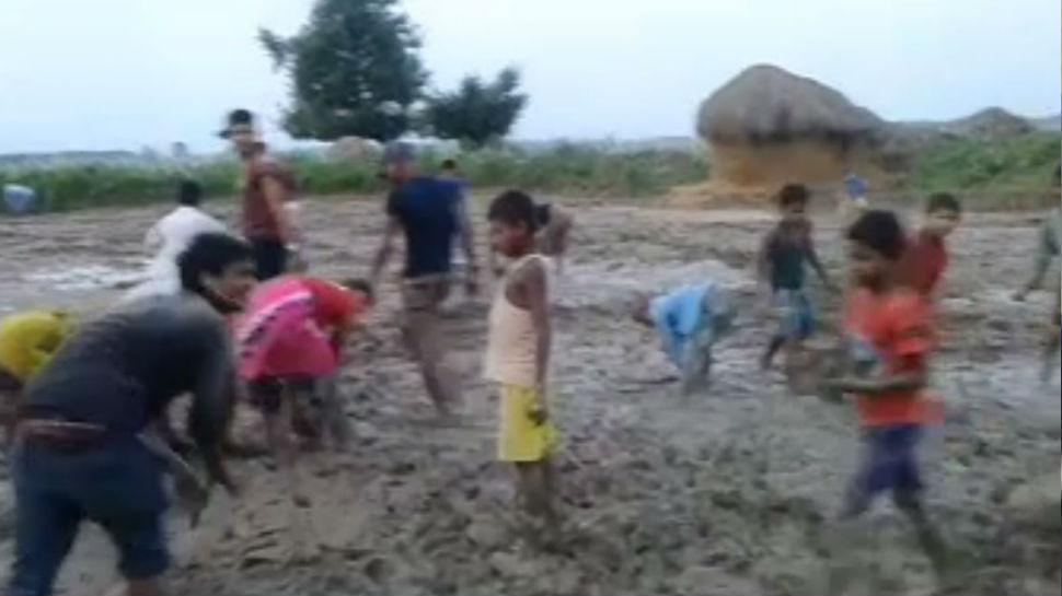 किशनगंज: खेत में जुताई में मिले ईस्ट इंडिया कंपनी के चांदी के सिक्के, लूटने के लिए उमड़ी भीड़