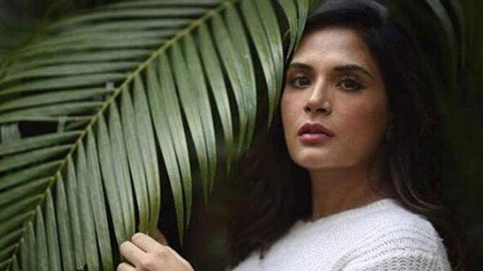 अनुभव सिन्हा की इस फिल्म में सेक्स वर्कर का किरदार निभाएंगी ऋचा चड्ढा...