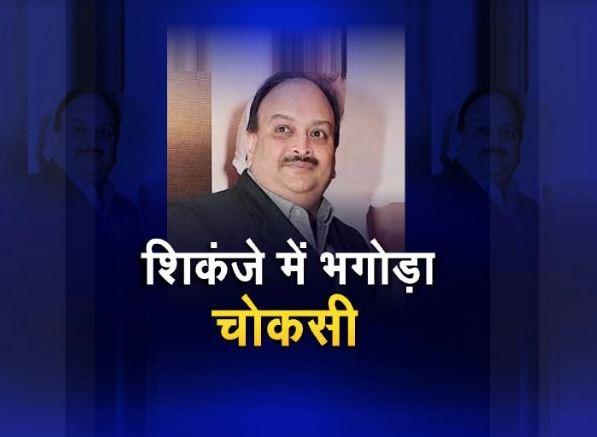 शिकंजे में भगोड़ा मेहुल चोकसी, जल्द भारत की जेल में होगा बंद!