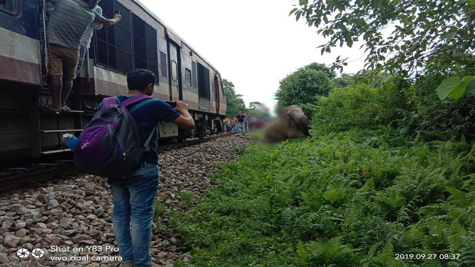 पश्चिम बंगाल: ट्रेन की टक्कर से घायल हुआ हाथी, ट्रेनों की आवाजाही हुई बाधित