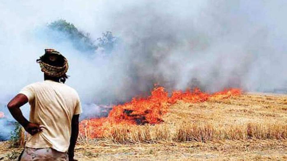 पंजाब में पराली जलाने वाले किसानों पर होगी बड़ी कार्रवाई, आगे से खेती के लिए नहीं मिलेगी जमीन