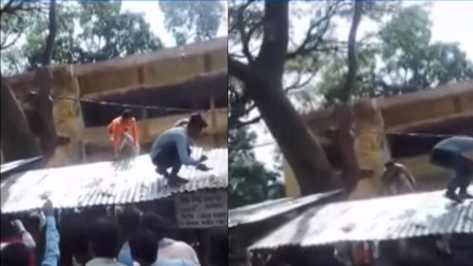 VIDEO: UP में यहां बंदर कर रहा है नोटों की 'बारिश', लूटने के लिए जुटी भीड़