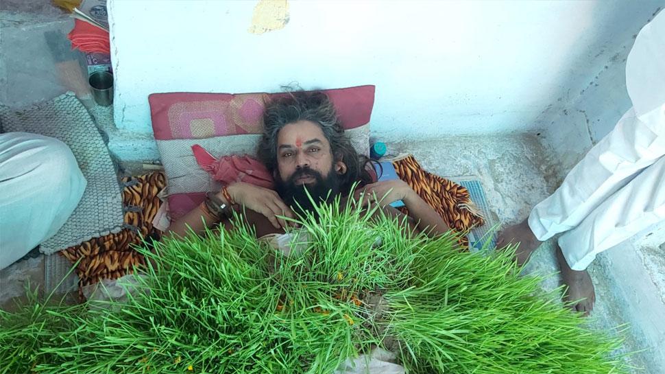 नवरात्र में विश्व शांति के लिए अनूठी तपस्या में लीन हैं ये संयासी, शरीर पर उग आए गेंहू के ज्वार