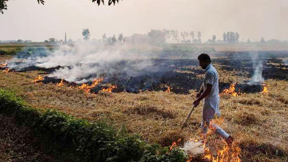 पंजाब में पराली जलाने के खिलाफ सरकार का बड़ा कदम, 22 सीनियर IAS अधिकारी रखेंगे नजर